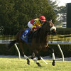 Flying Dash with Jerry Bailey up winning Transylvania Stakes, April 5, 2002, Keeneland, <br /> McPeek Origs 4 image 123<br /> photo by Anne M. Eberhardt