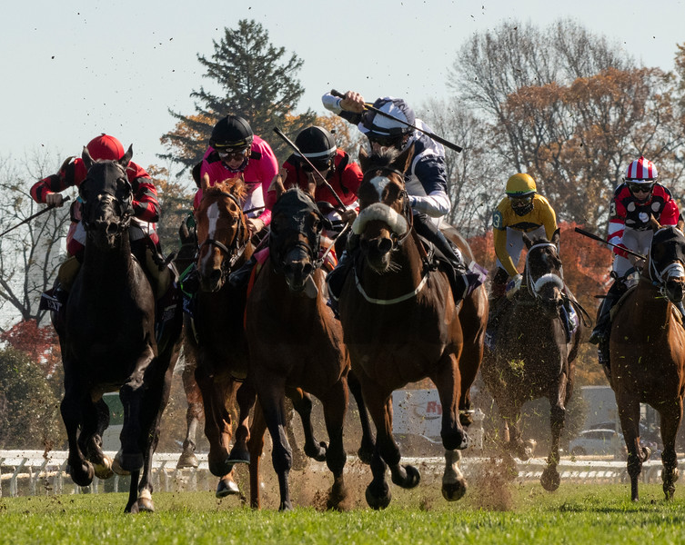 Glass Slippers with jockey Tom Eaves wins the $1M Turf Sprint at Keeneland Race Course Friday Nov. 6 2020 in Lexington, KY.  Photo by Skip Dickstein