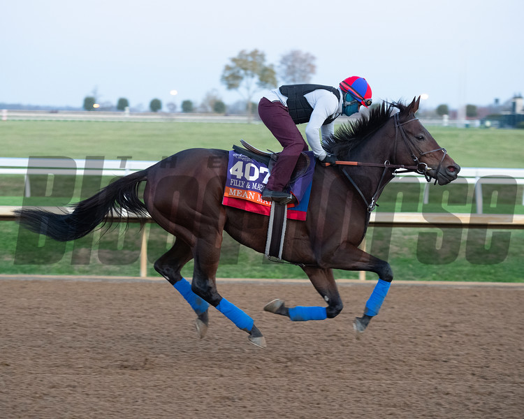 Mean Mary<br /> Breeders' Cup horses at Keeneland in Lexington, Ky. on November 5, 2020.
