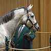 Hip 336 Unrivalled Belle with Eaton Sales brings $3.8 million from Mandy Pope<br /> Keeneland November Sales on Nov. 9, 2016, in Lexington, Ky.