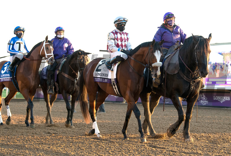 Tiz the Law before the Breeders' Cup Longines Classic at Keeneland in Lexington, Ky. on Nov. 7, 2020.
