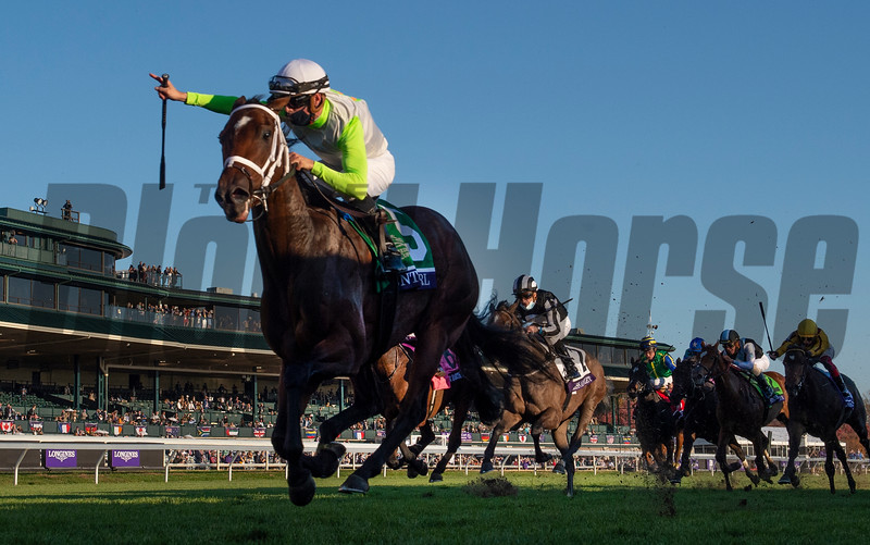 Aunt Pearl with jockey Forent Geroux aboard wins the $1M Breeders' Cup Juvenile Fillies Turf(G1)  at Keeneland Race Course Friday Nov. 6 2020 in Lexington, KY.  Photo by Skip Dickstein/Tim Lanahan