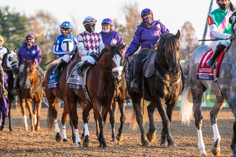 Tiz The Law ridden by Manuel Franco prior to the $2M Breeders' Cup Classic G1 at Keeneland Race Course Saturday Nov. 7,  2020 in Lexington, KY.  Photo by Skip Dickstein