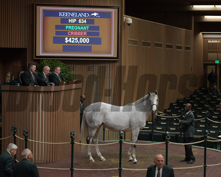 Hip 634 Spring Eclipse from Shawhan Place sells for $425,000.