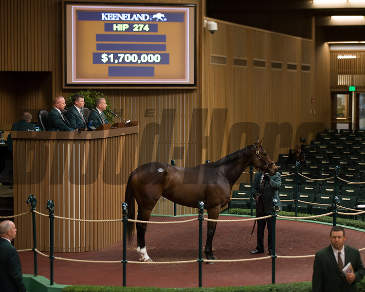 hip 274 Paola Queen brings $1.7 million. Brookdale