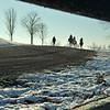 winter Training
