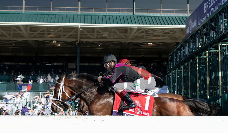 Horses race in the Breeders' Cup Dirt Mile at Keeneland in Lexington, Ky. on Nov. 7, 2020.