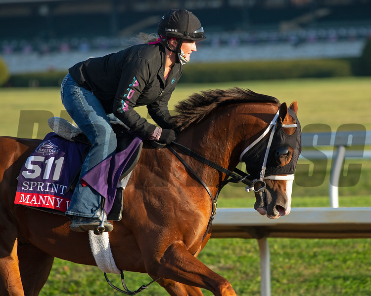 Manny Wah<br /> Breeders' Cup horses at Keeneland in Lexington, Ky. on November 5, 2020.