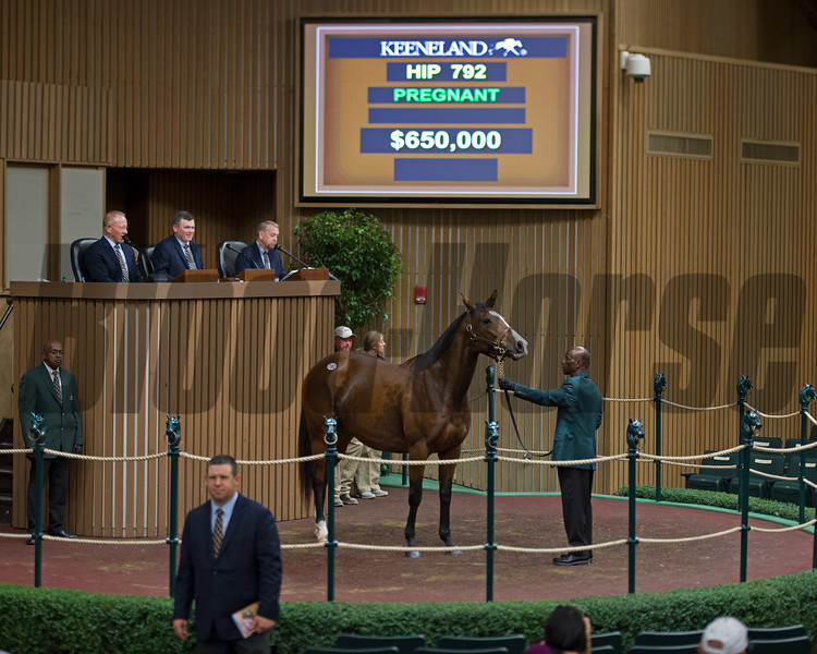 Hip 792 Easy Feeling in foal to War Front from Claiborne brings $650,000 from David Nagle. Ticket signed by Aisling Duignan.<br /> Keeneland November Sales on Nov. 10, 2016, in Lexington, Ky.