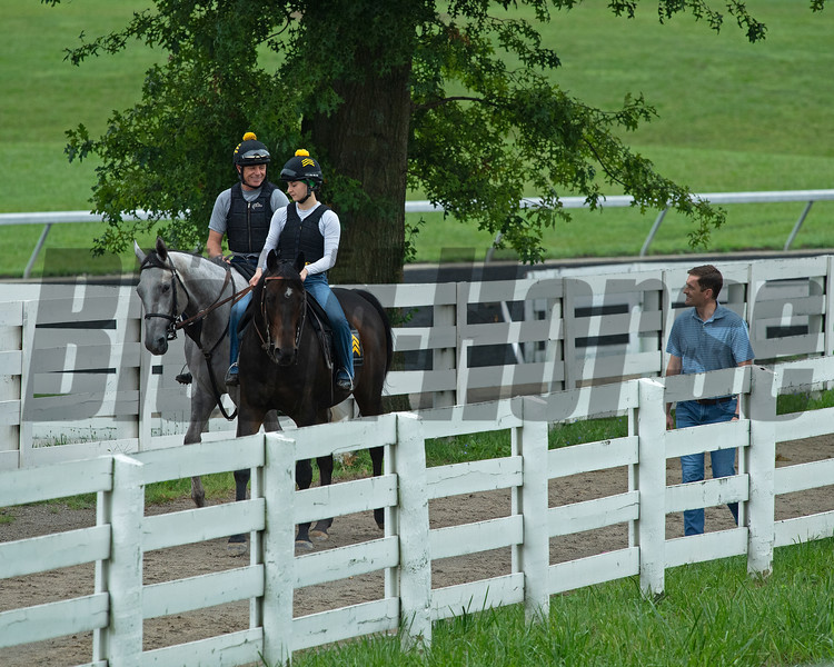 Walking with a set to the main track. <br /> Jack Sisterson at his training barn at Keeneland n Lexington, Ky on Aug. 17, 2021. Photo: Anne M. Eberhardt