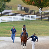 Cordell Anderson with Runhappy and Marcus O'Donnell up goes to track to work at Keeneland on Oct. 19, 2016