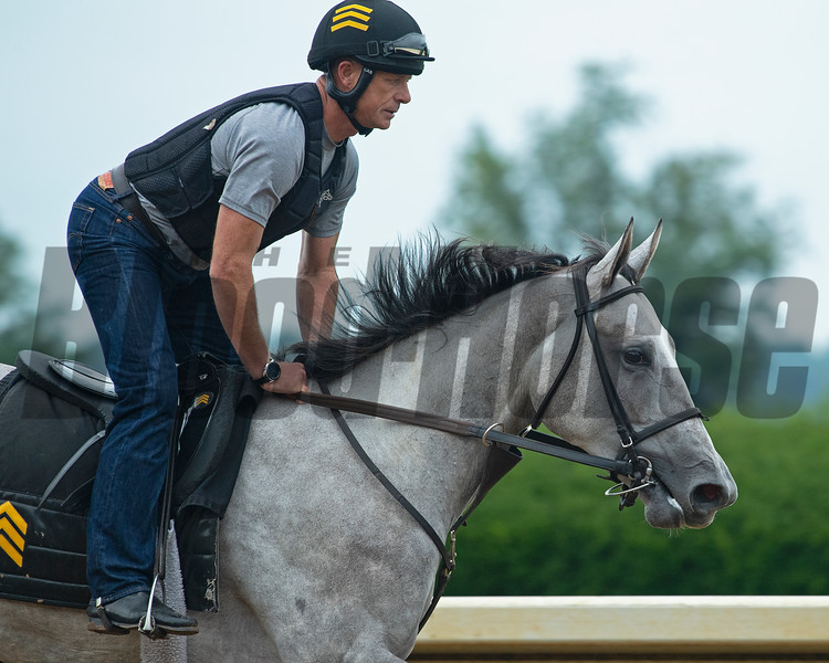 Miss Raison, a half-sister to Lexitonian by Raison d'Etat out of Riveiera Romper, training on the main track. Jack Sisterson at his training barn at Keeneland n Lexington, Ky on Aug. 17, 2021. Photo: Anne M. Eberhardt