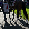 Horse and jockey in paddock at Keeneland in Lexington, Ky. on Nov. 7, 2020.