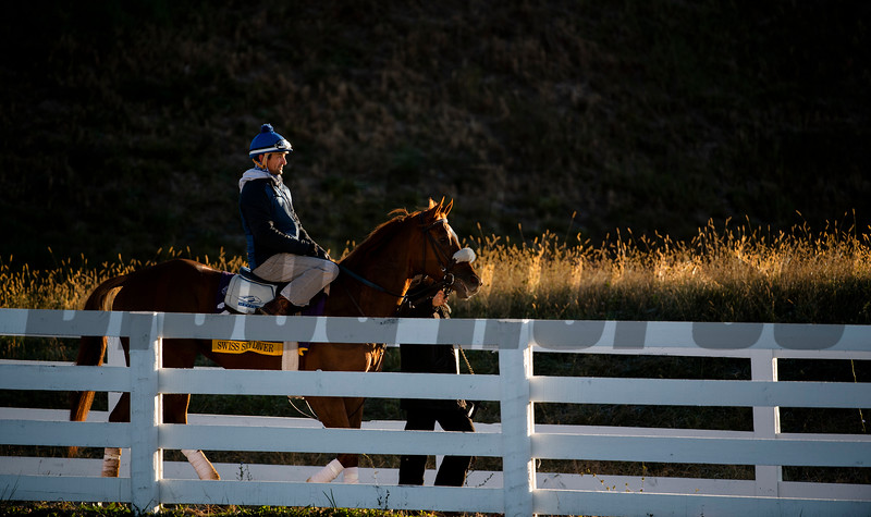 Preakness Swiss Skydiver with regular rider Robby Albarado in the saddle leaves the track after a morning gallop at Keeneland Race Course Monday Nov. 2 2020 in Lexington, KY.  Photo by Skip Dickstein