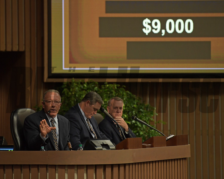 Auctioneer Cris Caldwell taking bids from the stand on Hip 893 Mini Sermon from Denali Stud at Keeneland January sales on Jan. 10, 2018.