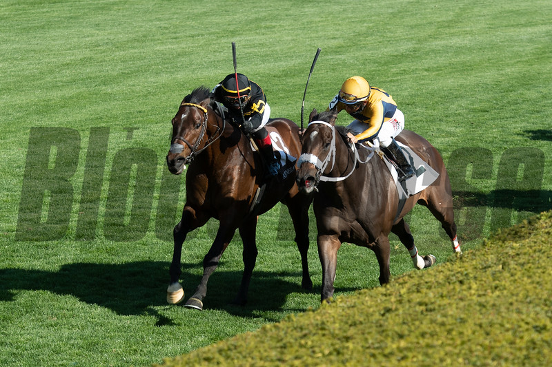 Bound for Nowhere and Joel Rosario (black silks) win the Shakertown Stakes (G2) at Keeneland on April 3, 2021.