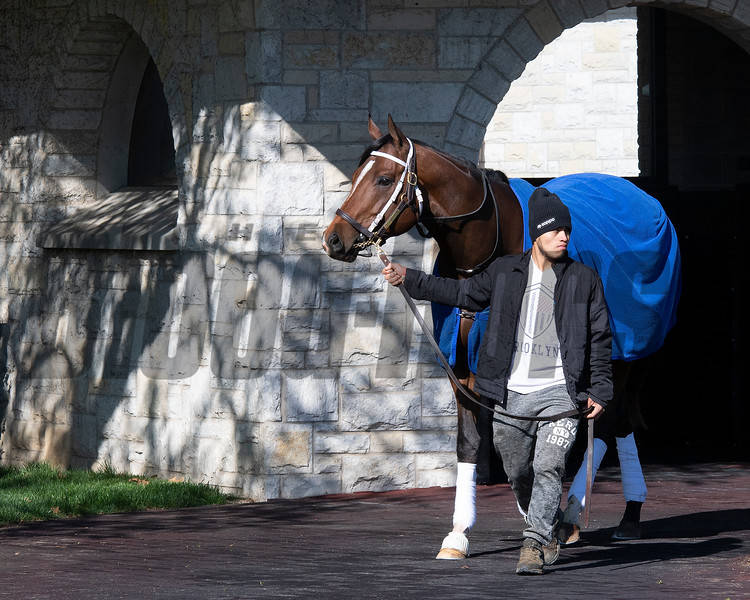 Hidden Scroll schooling<br /> Scenes from opening day at Keeneland near Lexington, Ky., on April 2, 2021.
