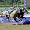 Caption: Shanghai Bobby with Rosie Napravnik wins the Grey Goose Juvenile with He's Had Enough in second.<br /> Breeders' Cup races at Santa Anita near Arcadia, California, on Nov. 3, 2012.<br /> BCRACES2012     Juvenile image<br /> Photo by Anne M. Eberhardt
