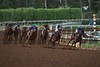 Bayern and Martin Garcia (right) lead the field around the final turn of the Breeders' Cup Classic (G. I).<br /> Crawford Ifland Photo