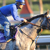Monzante entered in the Breeders Cup Juvenile Turf Division at Santa Anita Race Track in Arcadia Ca, November 4, 2009. <br /> Photo by: Mathea Kelley