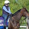 Caption:  Street Compass<br /> Breeders' Cup horses and connections at Santa Anita near Acadia, California, preparing for Breeders' Cup raceways on Nov. 1 and Nov. 2, 2013.<br /> BCWorks1Jpegs_10_30_13 image492<br /> Photo by Anne M. Eberhardt