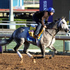 Frosted Breeders' Cup Classic Chad B. Harmon