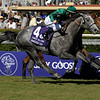 Caption:<br /> Donativum with Frankie Dettori wins the Grey Goose  Breeders' Cup Juvenile Turf   on October 25, 2008, at Santa Anita in Arcadia, California.<br /> Race6JuvenileTurfimage4313<br /> Poto by Anne M. Eberhardt