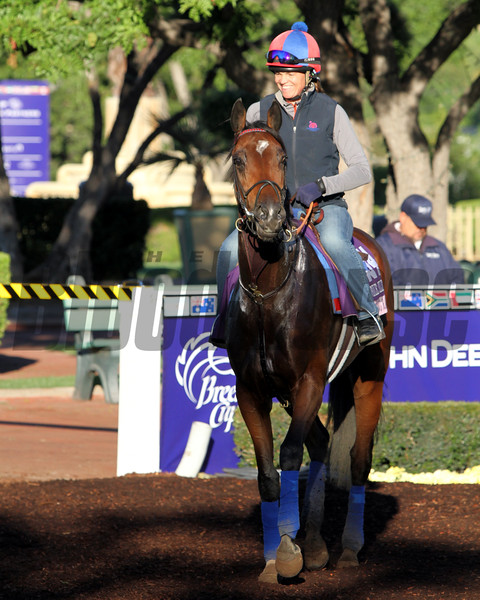 Dancing Rags Breeders' Cup Juvenile Fillies Chad B. Harmon