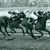 John Henry and jockey Laffit Pincay Jr. wins the Santa Anita Handicap at Santa Anita Park on March 8, 1981.
