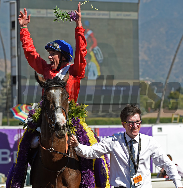 Lefranco Dettori celebrates winning the Filly Mare Turf (gr. I) aboard Queen's Trust at Santa Anita on Nov. 5, 2016, in Arcadia, California.