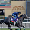 Caption:  Mizdirection with Mike Smith up works on the turf on Oct. 25, 2013.<br /> Breeders' Cup horses and connections at Santa Anita near Acadia, California, preparing for Breeders' Cup raceways on Nov. 1 and Nov. 2, 2013.<br /> BCWorks01_10_25_13 JPEGSimage 570<br /> Photo by Anne M. Eberhardt
