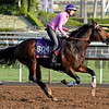 Caption:  Marchman<br /> Scenes at Santa Anita in preparation for Breeders' Cup  in California on Oct. 27, 2014.<br /> 1Origs10_27_14 image853<br /> Photo by Anne M. Eberhardt