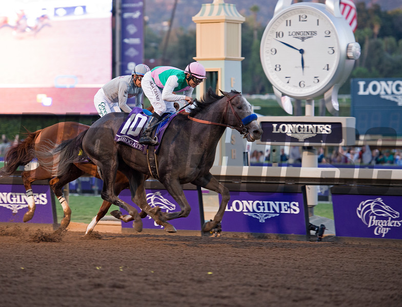 Arrogate edges out California Chrome to win the Classic (gr. I) at Santa Anita on Nov. 5, 2016, in Arcadia, California.