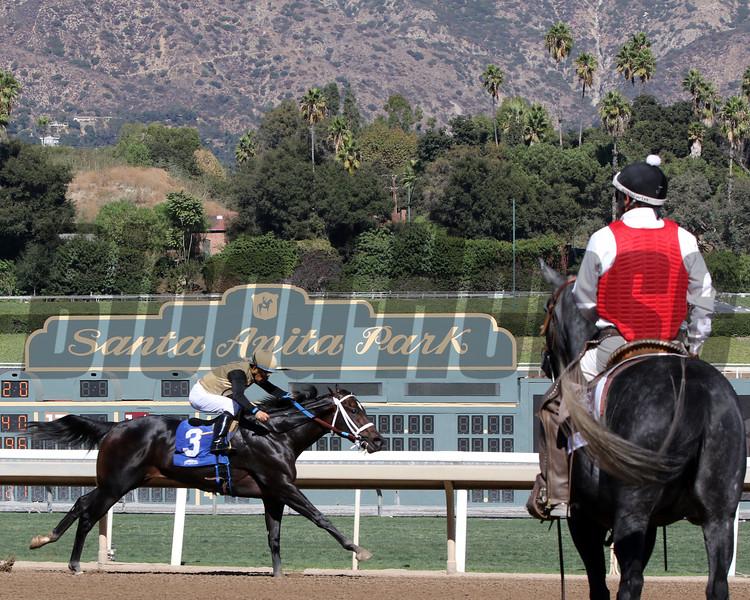 Breeders' Cup scene at Santa Anita Park on November 1, 2019. Photo By: Chad B. Harmon