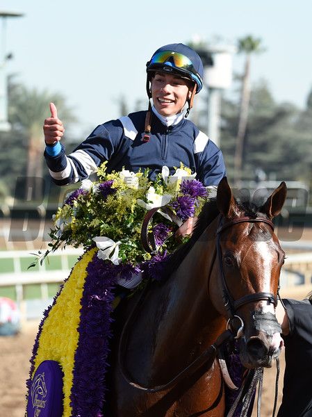 Oscar Performance, Jose Ortiz up, wins the Juvenile Turf (gr. I) at Santa Anita on Nov. 4, 2016, in Arcadia, California.