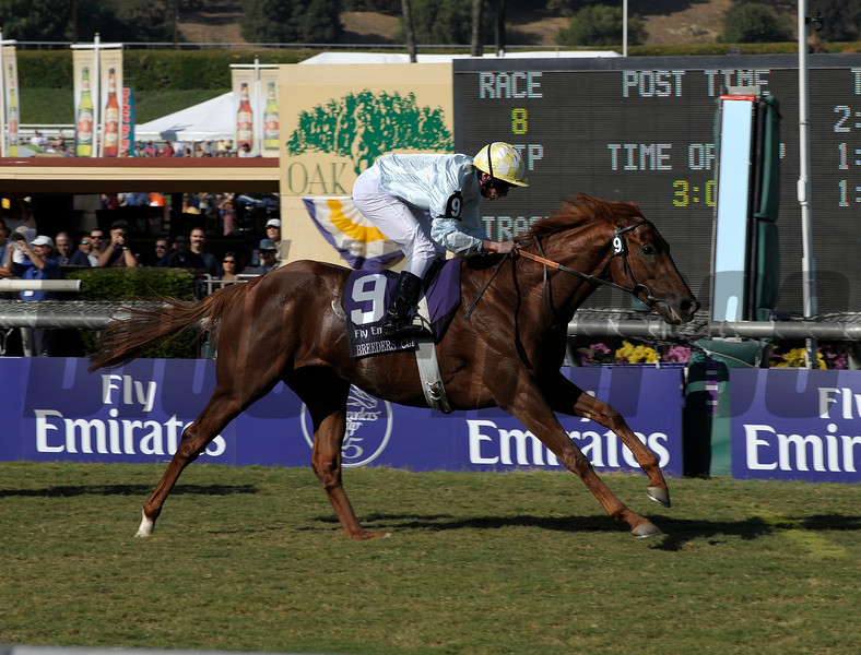 Caption:<br /> Conduit with Ryan Moore won the Emirates Airlines Breeders' Cup Turf (gr. I)  on October 25, 2008, at Santa Anita in Arcadia, California.<br /> Race8Turf image4527<br /> Photo by Anne M. Eberhardt