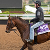 Runhappy<br /> Works at Santa Anita in preparation for 2016 Breeders' Cup on Nov. 1, 2016, in Arcadia, CA.