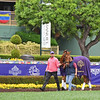 Madame Dancealot Schooling at Santa Anita. David Meah on left<br /> Works at Santa Anita in preparation for 2016 Breeders' Cup on Oct. 30, 2016, in Arcadia, CA.