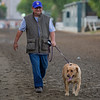 Alan Sherman with Jasper<br /> Works at Santa Anita in preparation for 2016 Breeders' Cup on Oct. 31, 2016, in Arcadia, CA.
