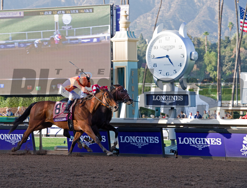 Beholder, with Gary Stevens up, wins the Longines Distaff (gr. I) at Santa Anita on Nov. 4, 2016, in Arcadia, California.