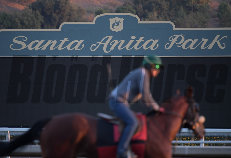 scene<br /> at  Oct. 29, 2019 Santa Anita in Arcadia, CA.
