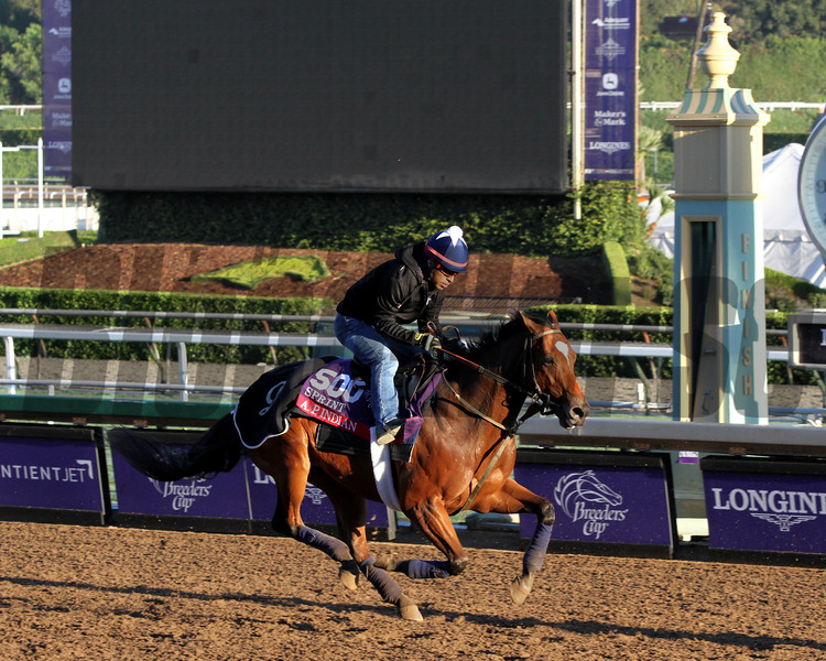 A.P. Indian Breeders' Cup Sprint Chad B. Harmon
