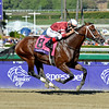 Caption: Tapizar with Corey Nakatani<br /> Breeders' Cup races at Santa Anita near Arcadia, California, on Nov. 3, 2012.<br /> BCRACES2012      Turf  image842<br /> Photo by Anne M. Eberhardt