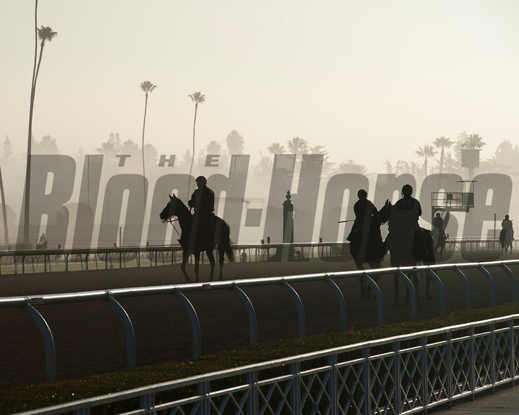 Caption:  morning fog<br /> Breeders' Cup horses and connections at Santa Anita near Acadia, California, preparing for Breeders' Cup raceways on Nov. 1 and Nov. 2, 2013.<br /> BCWorks01_10_26_13 RAWimage649<br /> Photo by Anne M. Eberhardt