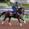 Unbridled Forever for Dallas Stewart on Oct. 26, 2014, at Santa Anita in preparation for the Breeders' Cup.<br /> 2Origs10_26_14 image466<br /> Anne M. Eberhardt photo