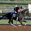Caption:  Tourist<br /> Scenes at Santa Anita  on Oct. 27, 2014, in preparation for Breeders' Cup  in California.<br /> 1Origs10_28_14 image363<br /> Photo by Anne M. Eberhardt