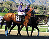 Princess of Sylmar<br /> Beholder wins the Breeders' Cup Distaff (gr. 1)<br /> Jockey: Gary Stevens<br /> Santa Anita Park, Arcadia, CA<br /> Purse: $2,000,000<br /> Date: November 1, 2013<br /> Class: Grade I<br /> TV: NBC Sports Network<br /> Age: 3YO&UP<br /> Race: 10<br /> Distance: 1 1/8 miles<br /> Post Time: 4:35 PM PT<br /> Photo by: Dave Harmon