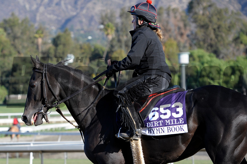 Caption:  Hymn Book<br /> Breeders' Cup horses and connections at Santa Anita near Acadia, California, preparing for Breeders' Cup raceways on Nov. 1 and Nov. 2, 2013.<br /> BCWorks1Jpegs_10_29_13 image601<br /> Photo by Anne M. Eberhardt