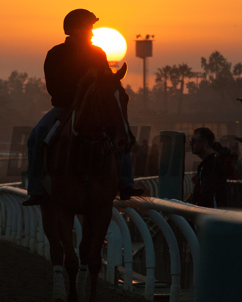 Caption:  sunrise<br /> Breeders' Cup horses and connections at Santa Anita near Acadia, California, preparing for Breeders' Cup raceways on Nov. 1 and Nov. 2, 2013.<br /> BCWorks02RAW_10_27_13 image827<br /> Photo by Anne M. Eberhardt