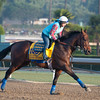 Caption:  Game on Dude with Dana Barnes<br /> Breeders' Cup horses and connections at Santa Anita near Acadia, California, preparing for Breeders' Cup raceways on Nov. 1 and Nov. 2, 2013.<br /> BCWorks01_10_26_13 RAWimage625<br /> Photo by Anne M. Eberhardt